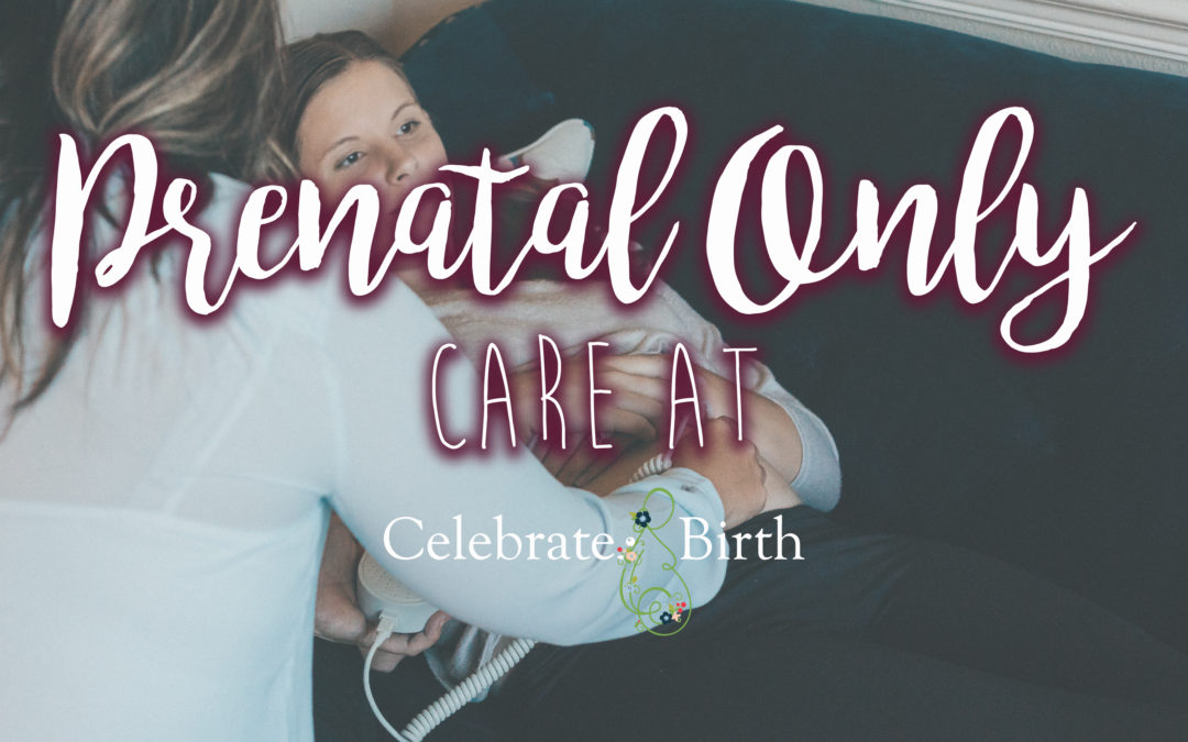 Prenatal Only Services at Celebrate Birth