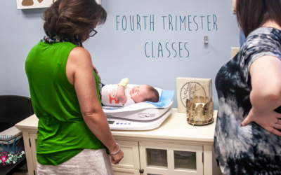 Fourth Trimester | Celebrate Birth